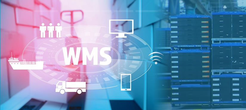 How Warehouse Management System lowers upfront cost & increases efficiency